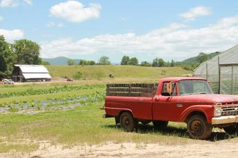 The red truck is an iconic part of the family farm, Darnell Farms