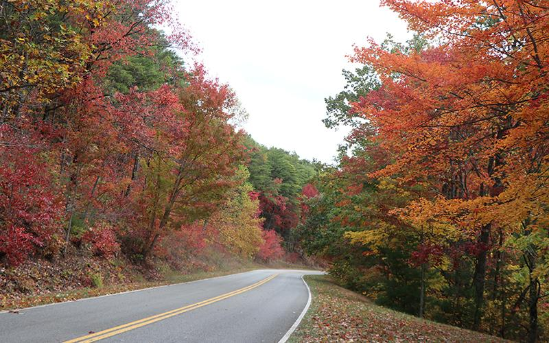 Foothills Parkway with fall leaves